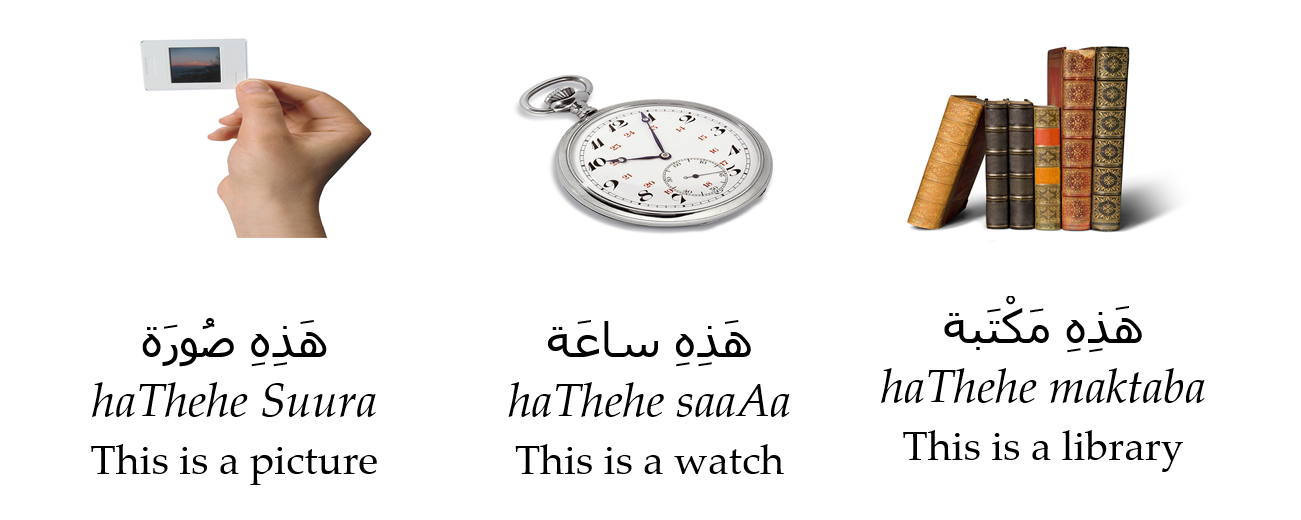 Arabic Phrases for Beginners